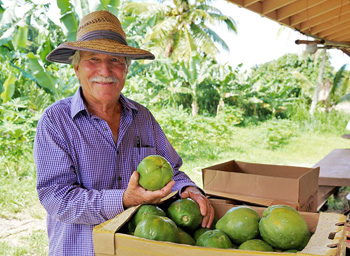 ONO Organic Farms, Exotic Tropical Fruit